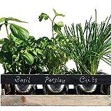Viridescent Kräutergarten Kit, Holz, ideal für Fensterbank, Hochwertig. Kaufen sie es Heute